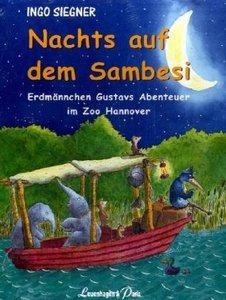 Nachts auf dem Sambesi