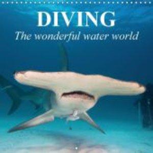 Diving - The wonderful water world (Wall Calendar 2015 300 × 300