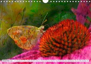 Schmetterlings-ART (Wandkalender 2020 DIN A4 quer)