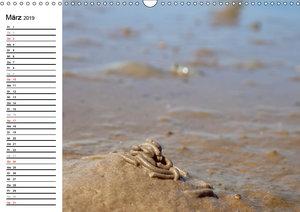 Das dänische Wattenmeer (Wandkalender 2019 DIN A3 quer)