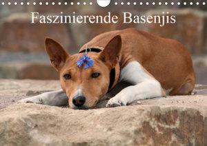 Faszinierende Basenjis (Wandkalender 2020 DIN A4 quer)