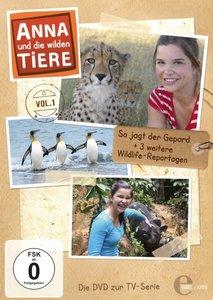 (1)So Jagd Der Gepard