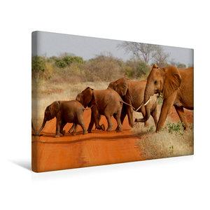 Premium Textil-Leinwand 45 cm x 30 cm quer Tsavo East NP, Kenia