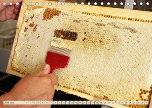 Die Welt der Imkerei: Blüten, Bienen, Honig (Tischkalender 2018
