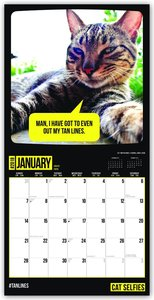 Cat Selfies - Katzen-Selfies 2018 - 18-Monatskalender