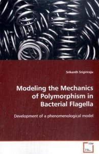 Modeling the Mechanics of Polymorphism in BacterialFlagella