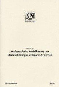 Mathematische Modellierung von Strukturbildung in zellurären Sys