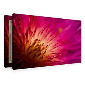 Premium Textil-Leinwand 75 cm x 50 cm quer color_impact_I
