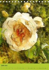 Malerische Rosen