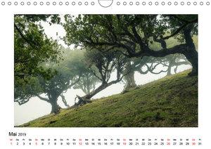 Der Reiz der Landschaft (Wandkalender 2019 DIN A4 quer)