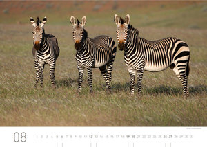 Namibia Exklusivkalender 2017