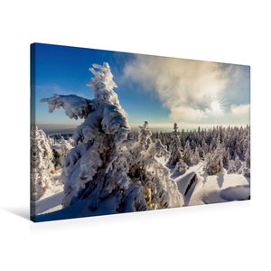 Premium Textil-Leinwand 75 cm x 50 cm quer Eisige Baumskulpturen