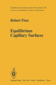 Equilibrium Capillary Surfaces