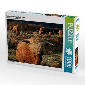 Schottisches Hochland Rind 1000 Teile Puzzle quer