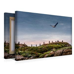 Premium Textil-Leinwand 45 cm x 30 cm quer Vesterålen