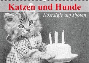 Katzen und Hunde - Nostalgie auf Pfoten (Wandkalender immerwähre