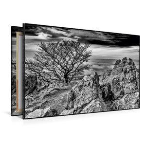 Premium Textil-Leinwand 120 cm x 80 cm quer Pferdskopf