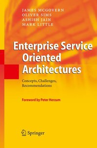 Enterprise Service Oriented Architectures