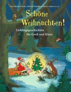 Schöne Weihnachten!, Lieblingsgeschichten für Groß und Klein