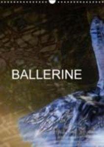 BALLERINE (Calendrier mural 2015 DIN A3 vertical)