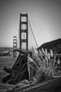 Premium Textil-Leinwand 50 cm x 75 cm hoch SAN FRANCISCO Golden