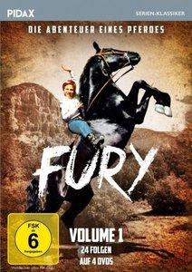 Fury - Die Abenteuer eines Pferdes. Vol.1, 4 DVD