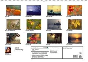 Zitate - Sammlung (Wandkalender 2020 DIN A2 quer)