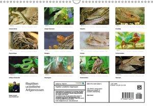 Reptilien urzeitliche Artgenossen
