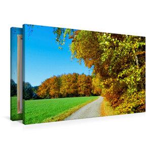 Premium Textil-Leinwand 90 cm x 60 cm quer Goldener Herbst