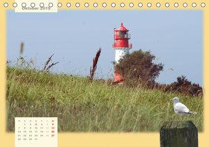 Leuchttürme Schleswig-Holsteins (Tischkalender 2019 DIN A5 quer)