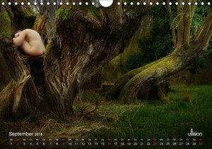 Lieblingsbäume - eins mit der Natur