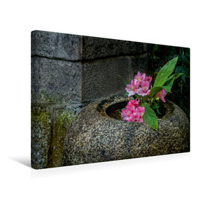 Premium Textil-Leinwand 45 cm x 30 cm quer Blüten in einer Stein
