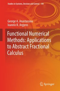 Functional Numerical Methods: Applications to Abstract Fractiona
