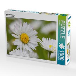 Gänseblümchen 1000 Teile Puzzle quer