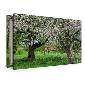 Premium Textil-Leinwand 120 cm x 80 cm quer Lebensraum von Stein