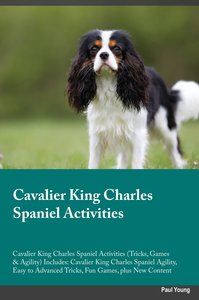 Cavalier King Charles Spaniel Activities Cavalier King Charles S