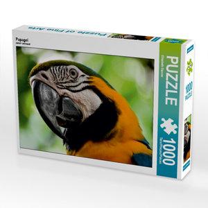 CALVENDO Puzzle Papagei 1000 Teile Lege-Größe 64 x 48 cm Foto-Pu