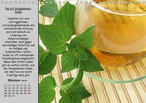 Eine kleine Teekunde - Zwölf Teesorten im Porträt