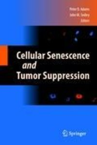 Cellular Senescence and Tumor Suppression