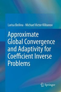 Approximate Global Convergence and Adaptivity for Coefficient In