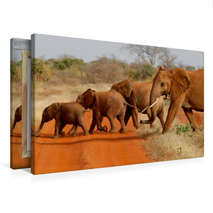 Premium Textil-Leinwand 75 cm x 50 cm quer Tsavo East NP, Kenia