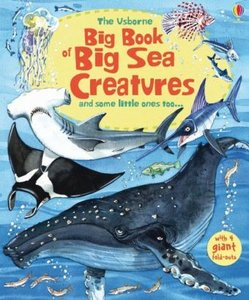 Big Book of Big Sea Creatures