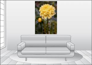 Premium Textil-Leinwand 80 cm x 120 cm hoch Dahlie