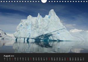 Die Antarktis (Wandkalender 2019 DIN A4 quer)