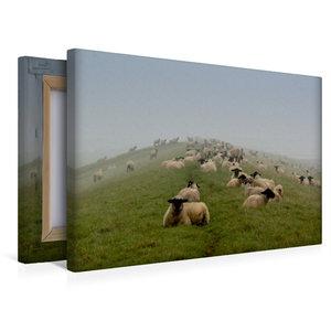 Premium Textil-Leinwand 45 cm x 30 cm quer Schafsherde