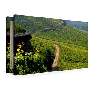 Premium Textil-Leinwand 90 cm x 60 cm quer Weinberge bei Oberder