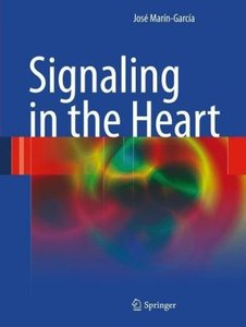 Signaling in the Heart