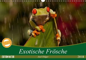 Exotische Frösche