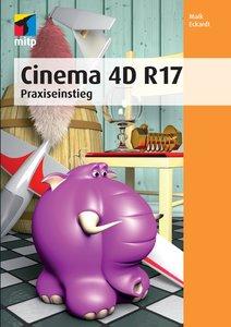Cinema 4D R 17 (mitp Professional)