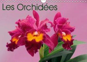 Les Orchidées (Calendrier mural 2015 DIN A4 horizontal)